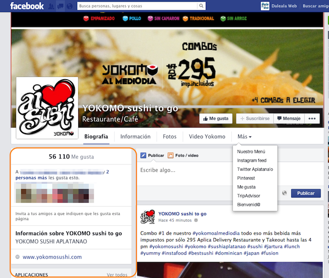 Nuevo-diseno-paginas-fans-facebook-lateral-izquierdo-info-fanpage