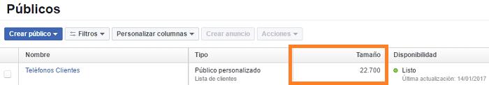Disponibilidad-Publicos-Personalizados-Facebook-Ads