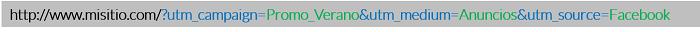 Ejemplo-URL-Enlace-Web-UTM-Codigo-Seguimiento-Google-Analytics-Corto