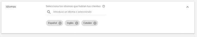 Definir-Idiomas-Google-Ads