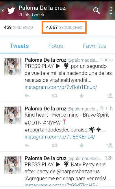 Ejemplo-Cuenta-Twitter-Solo-Publica-Instagram-Paloma