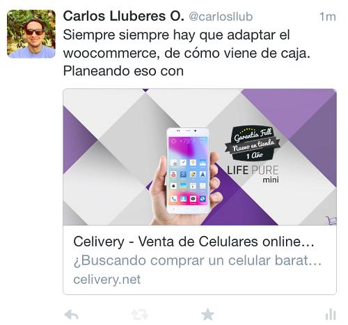 Ejemplo-Twitter-Cards-Resumen-Agrandada-Tuit-Expandido-Movil
