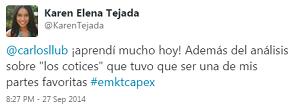 Testimonio-Diplomado-Marketing-Online-CAPEX-Santiago-Caballeros-ago-2015-Karen-Tejada