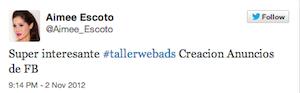 Testimonio-Taller-Publicidad-Online-Santo-Domingo-nov-2012-Aimee-Escoto