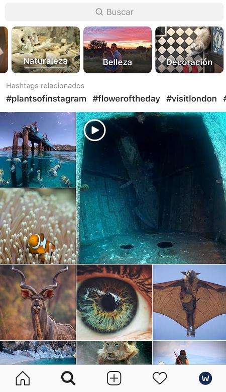 Explorar-Hashtags-Contenidos-Sugeridos-Instagram