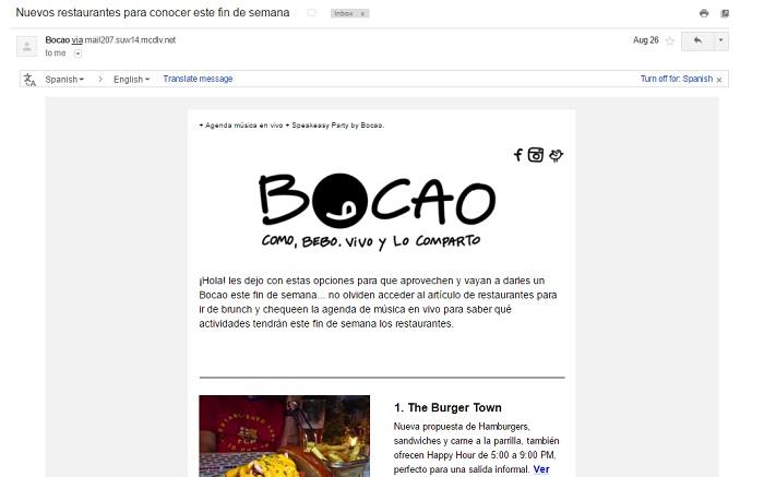 ejemplo-newsletter-bocao