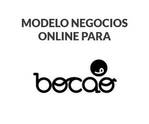 Consultoria-Modelo-Negocios-Online-Cliente-Bocao-300